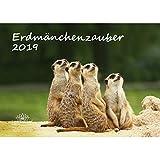 Erdmännchenzauber · DIN A3 · Premium Kalender 2019 · Erdmännchen · Afrika · Tiere · Wildnis · Natur · Edition Seelenzauber