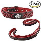 Newtensina Stylish Hundehalsband und Leine Set Nylonriemen gewebt Bling Halsband Leder Diamante Welpen Halsband mit Kontrastfarbe Leine für Hunde