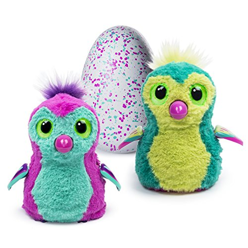 Hatchimals - Hatching Egg - Interactive Creature - Penguala - Pink/Teal Egg by Spin Master 0778989759904
