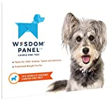 Wisdom Panel 2.0 Dog Breed DNA Test - More Than 350 Breeds