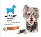 Wisdom Panel Insights Dog DNA Test