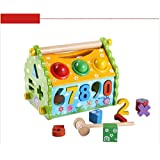 Multi-Functional Dismounting Wisdom House Wooden Learning Blocks Play Set For Kids (Multicolor)
