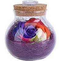 Silaite Flores frescas preservadas, botella ligera de Rose romántica, flores eternas hechas a mano, con teledirigido, lámpara del amortiguador del RGB del ...