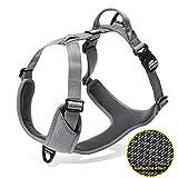 Truelove Hundegeschirr 3m Reflektierendes Langlebiges Nylon Verstellbares Geschirr Hunde Atmungsaktives Mesh(S,Grau)