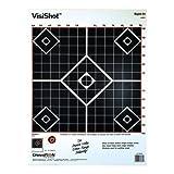 VisiShot Targets Sight-In(10 Pack)