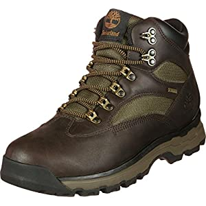 51Fsn84kh%2BL. SS300  - Timberland Men's Chocorua Trail 2 Mid Gore-tex Hiker Boots