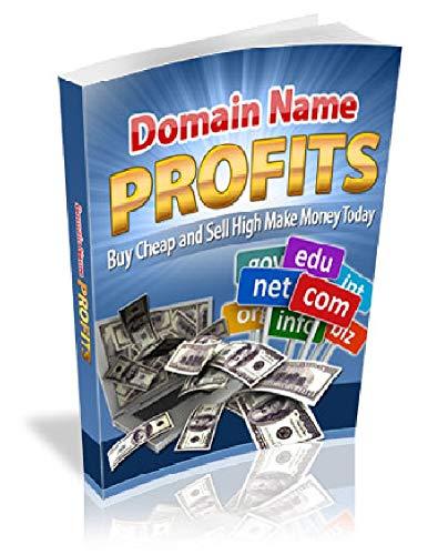 Les bénéfices du nom de domaine: Achetez pas cher et vendez haut Gagnez de l'argent aujourd'hui