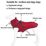 Hundemantel Ideale Schutz