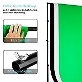 ESDDI Professionelles Fotostudio-Set 2.6M x 3M / 8.5ft x 10ft Hintergrund-Unterstützungs-System 3X Hintergrundgewebe Softbox-Studiolicht Stativstudiolampenschutztasche … Test