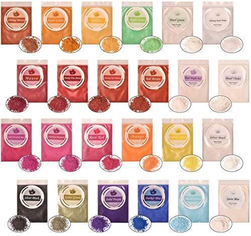 Pigmentos Polvo Uñas 10g*24 Colores DEWEL Pigmento