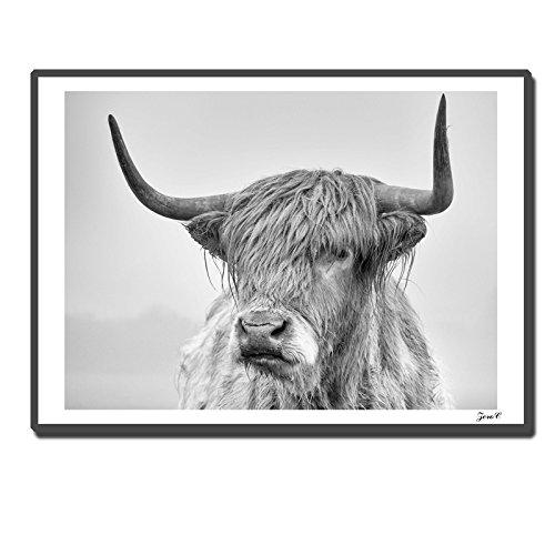 TOOGOO Poster estilo Retrato nordico vaca montana