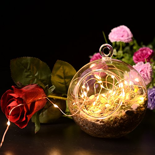 [2 Packung] BFTOP Kupferdraht Fee Lichter Saiten, 7ft 20 LED AA Batteriebetrieben Starry String Lights, Ambiance Rope Light for Outdoor, Garden, Home, Dancing, Christmas Party (Batterie sind nicht enthalten) – Warm White