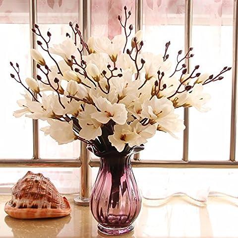 Beata.T Fleurs Artificielles Set Salon Hortensia Fleur Vase En Verre Décoration Générale Florale (30 * 35Cm),