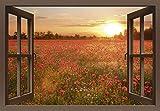 Artland Qualitätsbilder I Alu Dibond Bilder Alu Art 70 x 50 cm Blumen Mohnblume Foto Rot B8CL Fensterblick Mohnblumenfeld Bei Sonnenuntergang