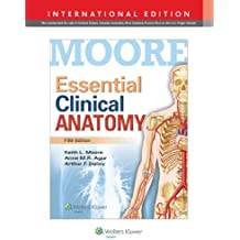 Essential Clinical Anatomy by Keith L. Moore (2014-03-01)