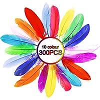 Aodoor Plumas Colores, Plumas Decorativas Sicuri y no tossici y no sbiadiscono para Manualidades FAI Da Te, 300pcs (para Unidades)
