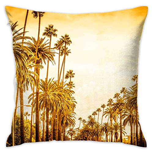 Retro Style Los Angeles Street Decorative Throw Pillow Modern Square Form Stuffer for Couch Sofa Or Bed Set Cozy Home Decor Size:18 X 18 Inches/45cm x 45cm ()