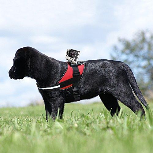 Greleaves Universal Dog Pet Harness Mount mit verstellbaren Fetch Brustgurt und anderen Gopro Zubehör für GoPro Hero 5/4/3+/3/XIAOYI / SJ und andere Sport-Kameras - 3