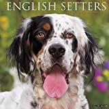 Just English Setters 2017 Calendar