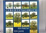 Geburtstagsbuch: Ein Baum /Ein Jahr /Ein Leben - Hermann Hillen