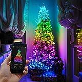 Smart App kontollierte Weihnachtsbaum Lichterkette - TWINKLY - für Innen und Outdoor - unzählige Farb-, Muster- und Animations-Kombinationen, von Festive Lights (13m)