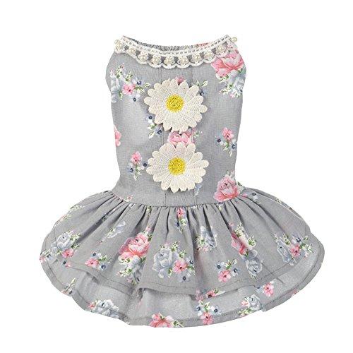 leidung Haustier Kleid Welpen Katze Prinzessin Ballettröckchen Kleid Bogen Blase Rock Hündchen Weste Hemden Hund Kostüme Bekleidung für Frühling Sommer X-Small Grau (Blasen Kostüme)