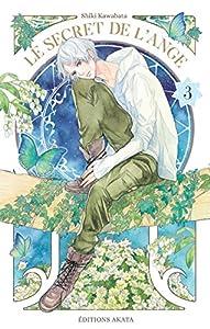 Le secret de l'ange Edition simple Tome 3