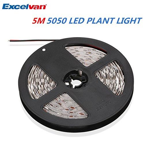 Excelvan - 5050 Tira LED de Luz Para Planta Crecimiento (5m, 300LED, DC12V, Para Jardín Interior Invernadero, Flor Hidropínico, Hortalizas)