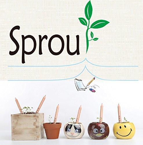 Preisvergleich Produktbild Fancyus Sprout Bleistift-Set mit Kräutersamen