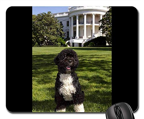 Mouse Pads - Dog White House Portuguese Water Dog BO Obamas Pet 1 -