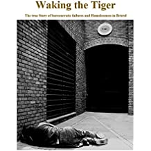 Waking the Tiger: The true story of bureaucratic failures and Homelessness in Bristol