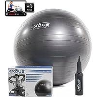 Palla Fitness 65cm / Palla Da Ginnastica Con Pompa - Per Addominali- Stabilità - Utilizzabile Per Yoga E Pilates - Parto E Gravidanza - 60 Minuti Video Online Incluso Gratis