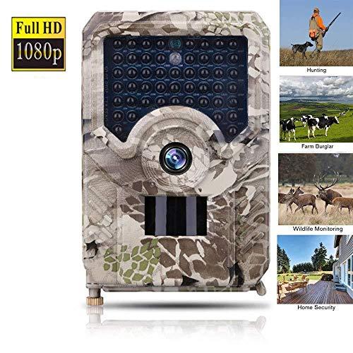 XINCH-MONITOR Wildlife Trail Kamera, 12MP 1080P HD IP56, wasserdicht für Jagd und Wildlife DV, Temperaturmessung, unsichtbare Nachtsicht bis zu 20 m, für Untersuchungen der Waldfauna Farb-dome-video
