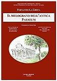 Il melograno dell'antica Paestum. Fonti letterarie e archeologiche, virtù salutari e valorizzazione. Con nuovi documenti sul santuario della Madonna del Granato