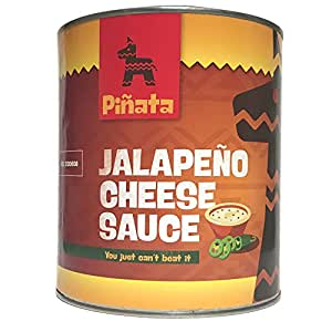 Viva Mexico Jalapeno Cheese Sauce, 1er Pack (1 x 3 kg Dose)