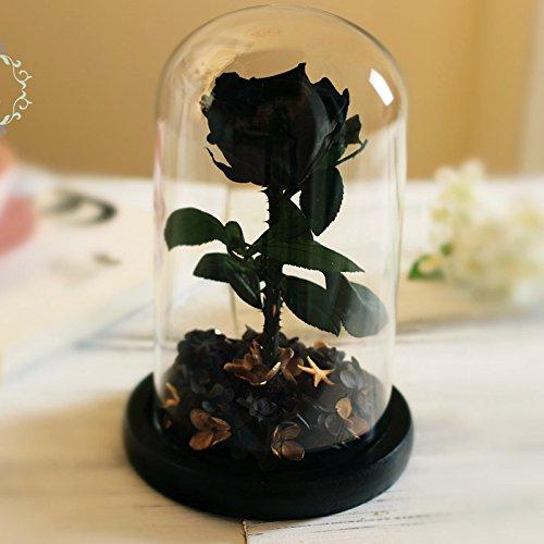 Ewige Blume Rose Geschenk Box mit Glasabdeckung Valentinstag Geburtstag, Schwarz (Black Box Wein Kostüm)