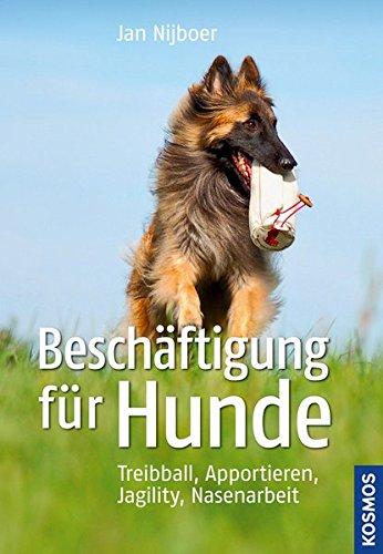 Hunde: Treibball, Apportieren, Nasenarbeit, Jagility (Hunde-nasenarbeit)