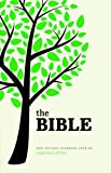 Holy Bible: New Revised Standard Version Anglicized Edition