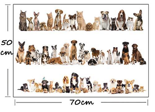 Nette Husky Haustiere Hund 3D Wandaufkleber Tier Shop Kinderzimmer Dekoration Tier Aufkleber Kunstwand Poster d1 33x47cm - Taxi Haustier Kleine