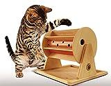 Roue de la Fortune pour chats