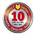 WOLF-Garten multi-star® Winterbesen WB 40 M; 3918000
