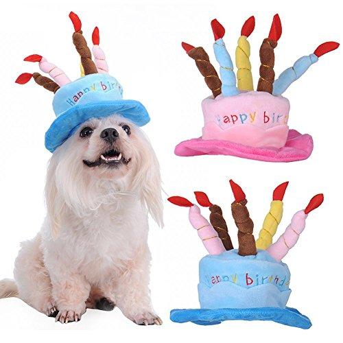Zyurong Hund Happy Birthday Hat mit Kuchen & Kerzen Design Party Kostüm Zubehör Kopfbedeckung