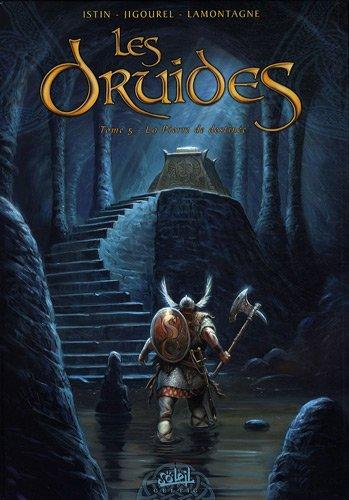 Les Druides, Tome 5 : La Pierre de destinée par Jean-Luc Istin
