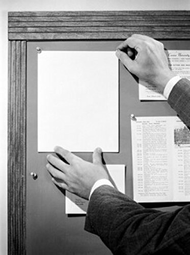 Male hands pinning blank sheet on notice board Poster Drucken (45,72 x 60,96 cm)