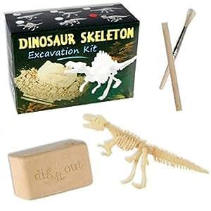 Jeu éducatif squelette de dinosaure - Devenez paléontologue - Grattez, fouillez, creusez, découvrez !