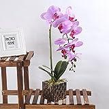 Alicemall Flores Artificiales Flor Mariposa con Maceta Rosa Decoración Hogar Artificial Planta de Flor Orquídea Mariposa Rosa Ligero