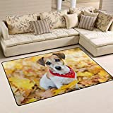 Bixungan Jack Russell Terrier Puppy Dog Area Rug Rugs Non-Slip Indoor Outdoor Floor Mat Doormats for Home Decor Size:16 X 24(40x60cm)