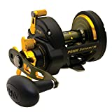 Penn Baitcasting Reel Review and Comparison