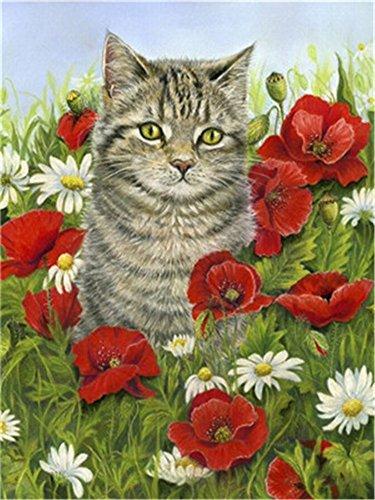 XDXART Diy Ölgemälde Malen nach Nummer Kit für Erwachsene Anfänger 16 x 20 Zoll - Süße Kätzchen, Dekoration mit Bürsten Weihnachtsdekorationen Geschenke (Ohne Rahmen) -