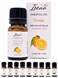 100% reines Ätherisches Süße Orange Öl Therapeutische Grad Duftöl für Aromatherapie, Massage, Wellness, Aroma Diffuser, Duftlampe 10 ml